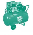 Поршневой компрессор на 220В